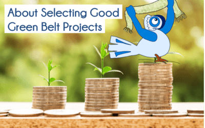 About Selecting Good Green Belt Projects